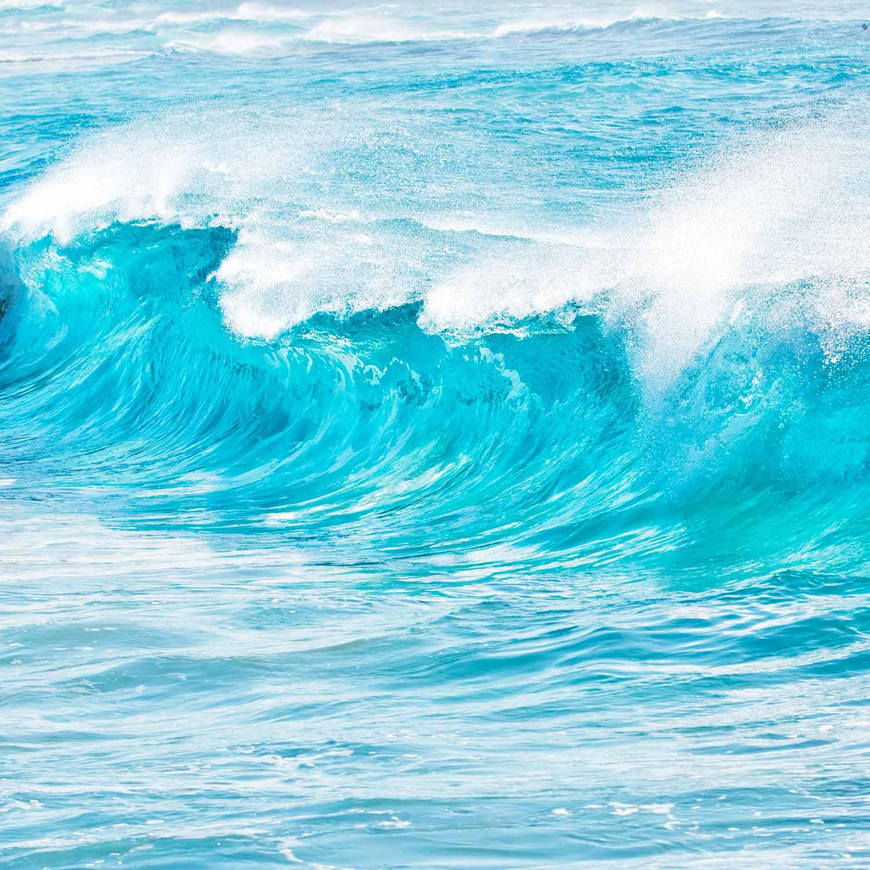 Wellen Hawaii